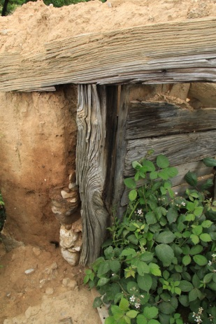 wunderschöner alter Türrahmen