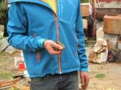 ...Philipp, der Lehmbaufachmann, erklärt welche Ingredienzien seinen Hanf-Kalk-Lehmputz verfeinern...