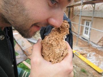 Ein Architekturstudent von der Linzer Kunstuni weiß spätestens seit seinem letzten Baustellenaufenthalt in Indien (http://littleflower-india.org/news/phoolna-heist-aufbluhen/), dass sich manche Baumaterialien vor allem durch die Nase bemerkbar machen...