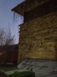 der Efeu schützt den Lehm im Sommer vor Regen